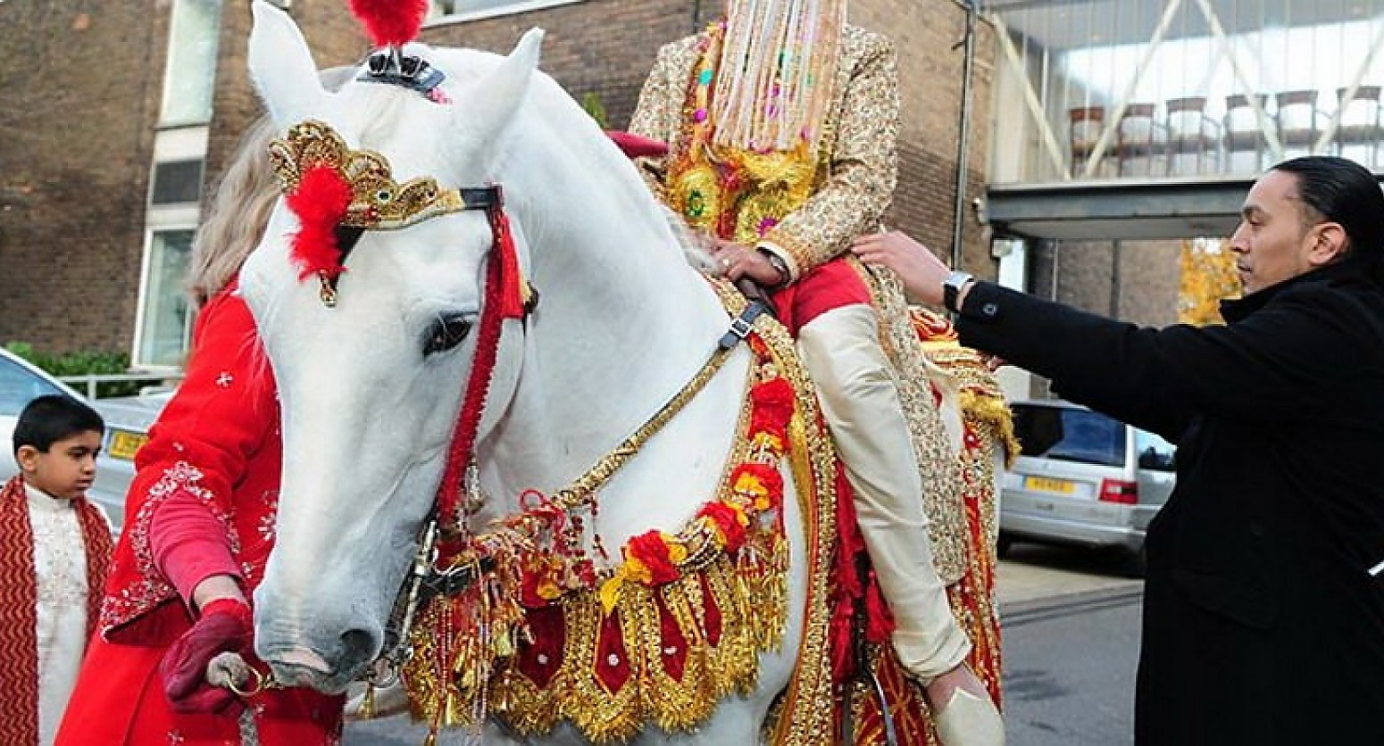 Desi Indian Wedding Horses